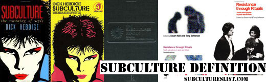 subculture definition