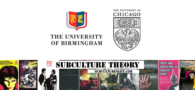 Subcultures: Sociology and Chicago School Essay Sample
