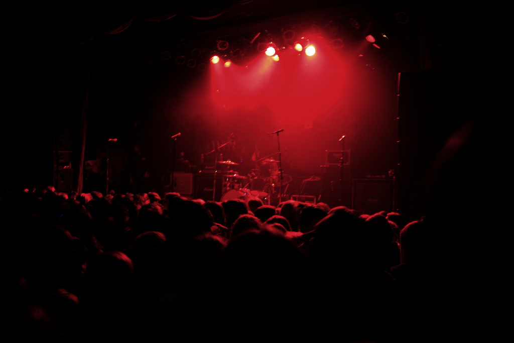 concert crowd photo 2